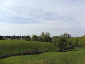 Panorama Albinea